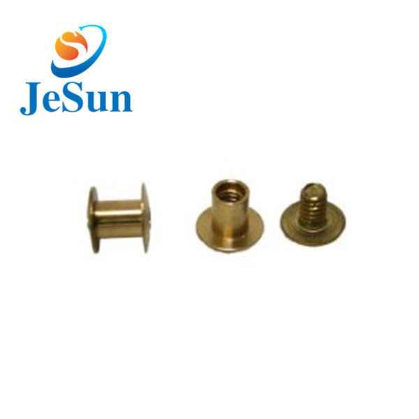 China custom good quality brass screws845