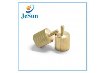 Fastener Manufacturer Mould-in Straight Knurling Brass Screws