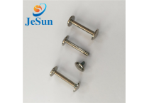 Customized stainless steel chicago screws