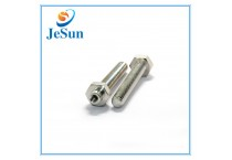 Stainless Steel Bolt with Hex Screw