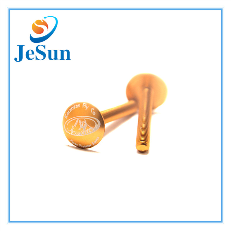 OEM Factory Supply Gold Color Screws in Dominican Republic