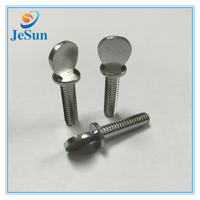 Special Customized Stainless Steel Flat Head Screw in Swiss